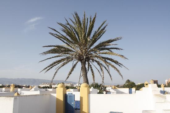 Apartamentos El Minarete: view from solarium/roof