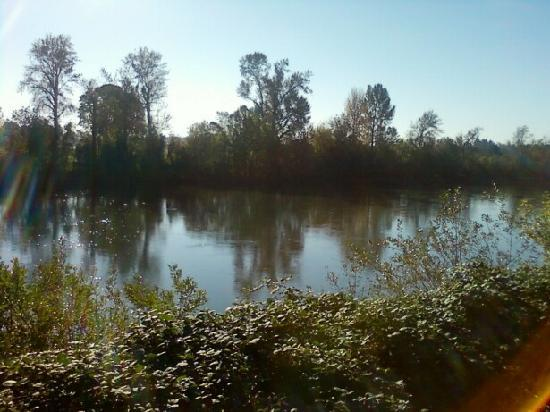 Holiday Inn Express Corvallis: Riverbank behind the HI Express