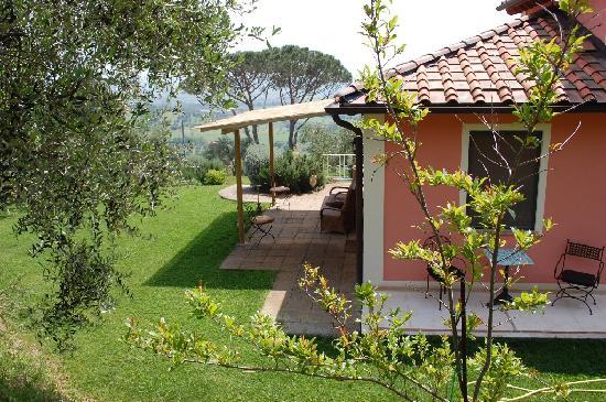 B&B Il Pino: giardino davanti alle camere