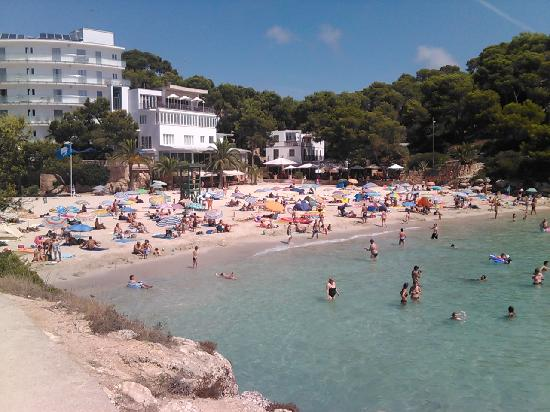 Hotel Pinos Playa: Playa