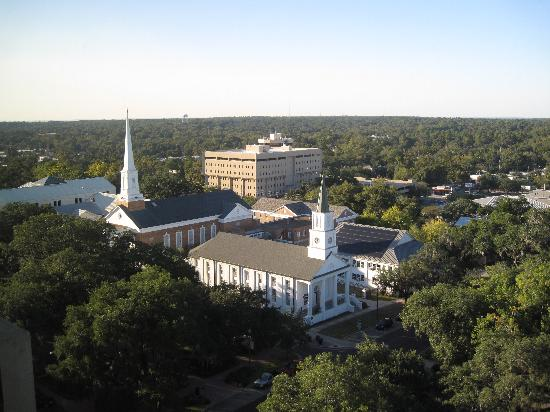 Doubletree Hotel Tallahassee: More of the view