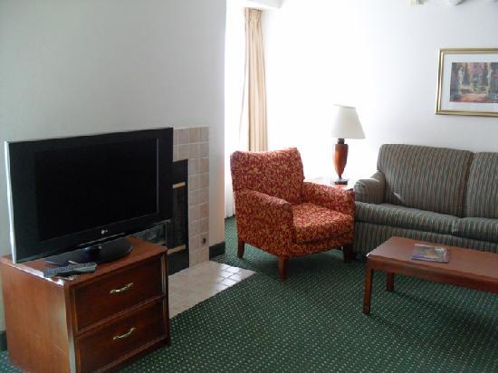 Residence Inn by Marriott Asheville Biltmore: Living space w/ fireplace!