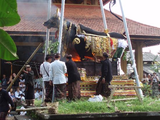 Bali Aruki - Day Tours: 遺体の入った黒牛に火が・・・・