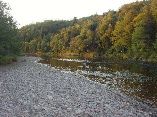 Margaree Riverview Inn: Margaree River