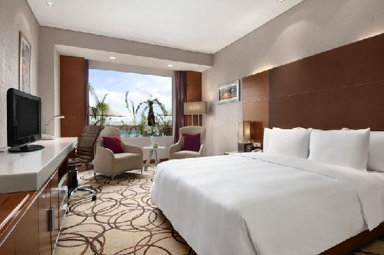 Piccadily Hotel New Delhi: Guest Room
