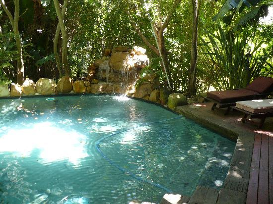 Riverside Estates: private pool at Treehouse