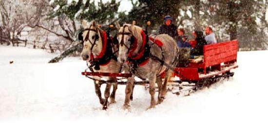 Northeast Kingdom, VT: Sleigh Rides