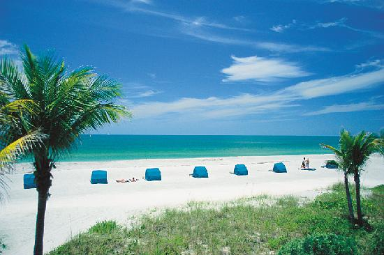 The National Miami Beach Tripadvisor
