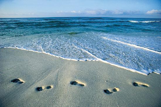 Footprints Panama City Beach Fl