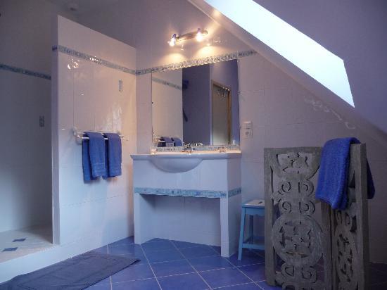 Domaine de la Maison Neuve: A bathroom