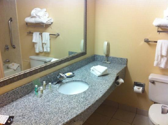 Holiday Inn Roanoke Valley View: Bathroom