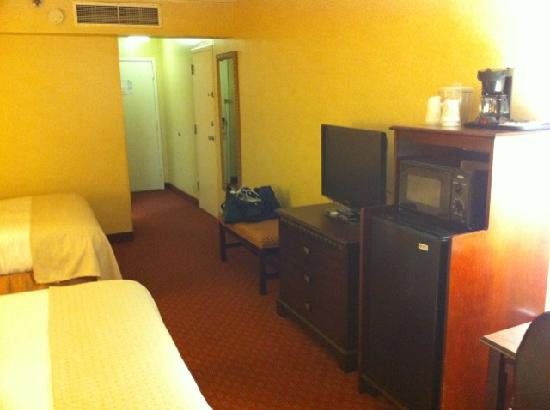 Holiday Inn Roanoke Valley View: Flat screen TV, MicroFridge