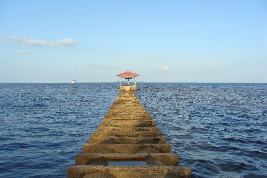 Bintan Agro Beach Resort : View from Timber House