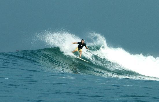 Padang Padang Surf Camp: toro-toro