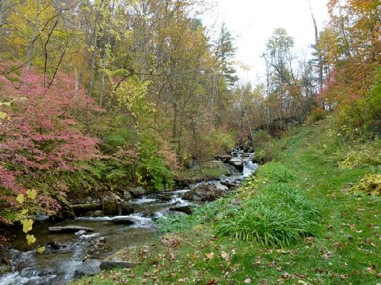 Inn at the Shaker Mill Farm: Picture perfect brook