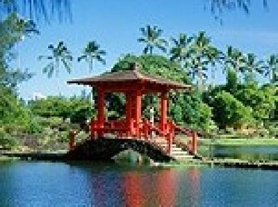 A'alani Volcano Heart Hawaii : Hilo Gardens