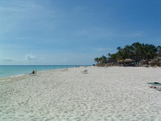 Divi aruba la mejor playa de aruba picture of divi - Divi all inclusive ...