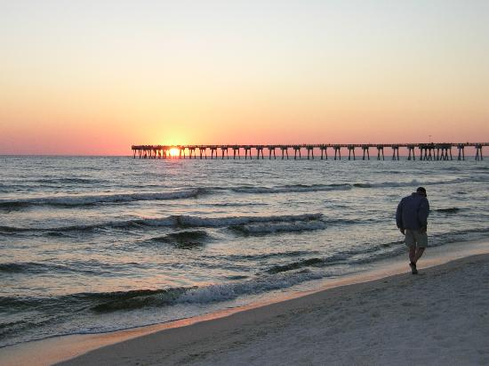 sunset on the beach picture of osprey on the gulf. Black Bedroom Furniture Sets. Home Design Ideas