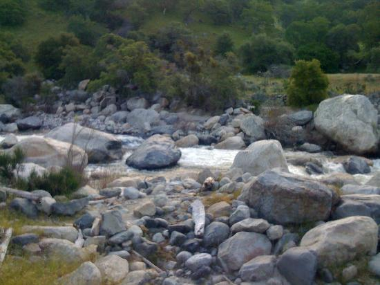 Buckeye Tree Lodge: kawea river