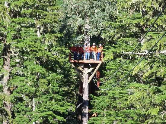 Alaska Zipline Adventures: So much fun!!!