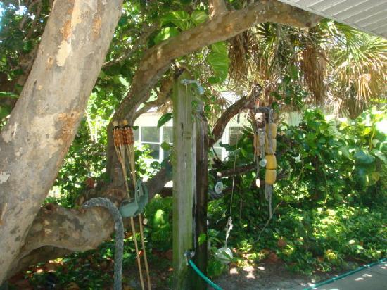 Sailfish Beach Resort: Tropical decor outside