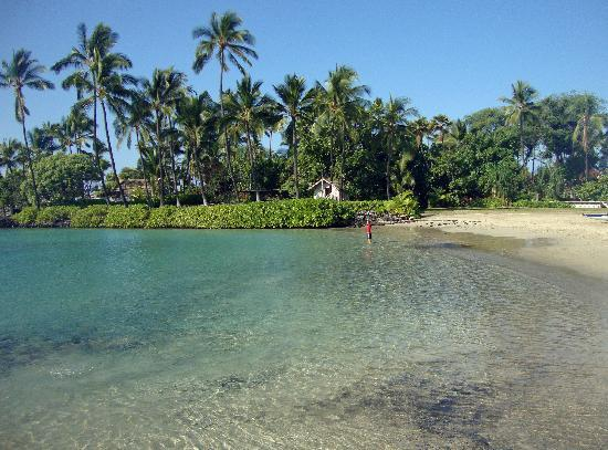 Courtyard By Marriott King Kamehameha S Kona Beach Hotel Small At