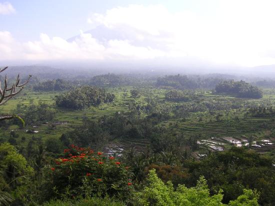 Patal Kikian: キキアンからの眺望2