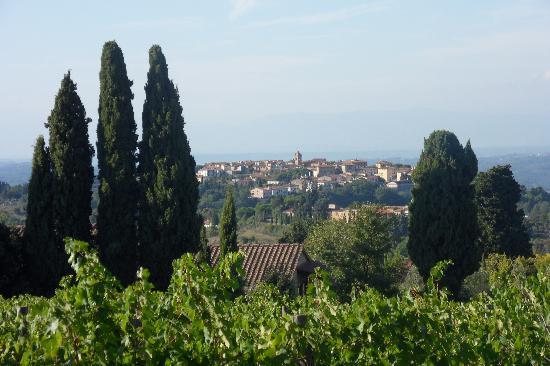 Borgo Il Castagno: Local countryside