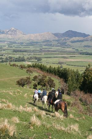 Hanmer Horses: Farm and hill rides available
