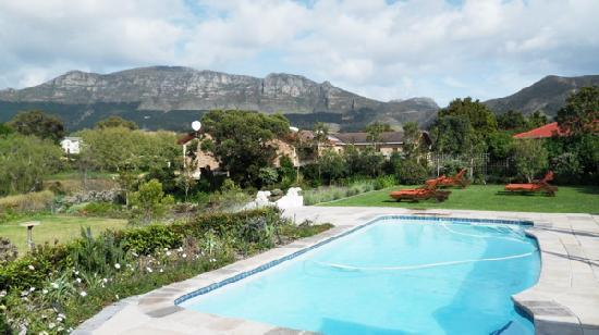 Dongola Guest House : Sparkling pool behind Dongola House