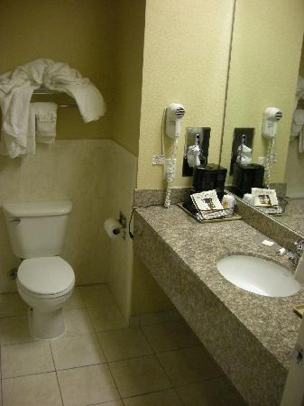 Super 8 Intercontinental Houston: bagno