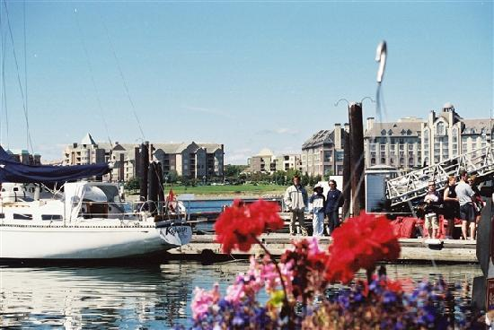 Victoria, Kanada: A profusion of rental boats , for coastal tours