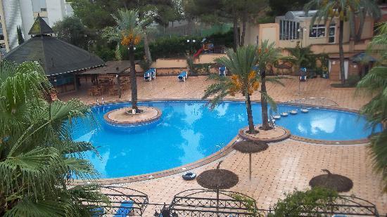 Pool bild fr n cabau aquasol palma nova tripadvisor for Appart hotel 45