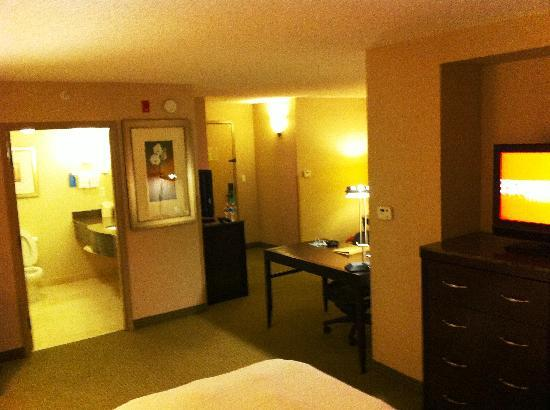 Hilton Garden Inn Denver Tech Center : Evolution Suite 332