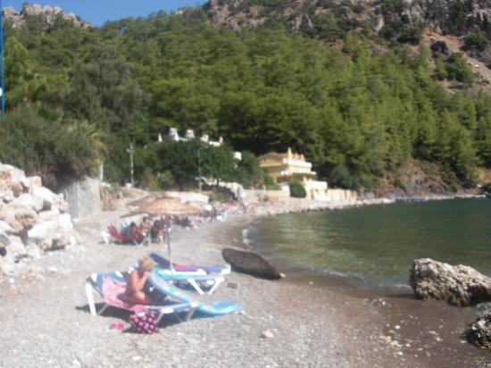 Meril Hotel: strand