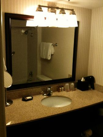 Sheraton Dallas Hotel by the Galleria: The bathroom