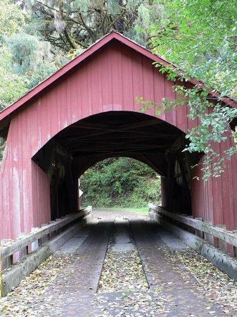 North Fork Yachats Covered Bridge: North Fork Yachats River Covered Bridge, Yachats, Oregon