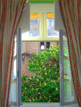 Hotel Cardinal: Ausblick Suite