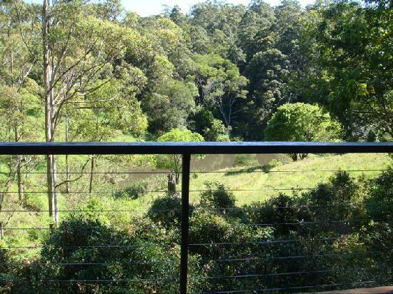 Whispering Valley Cottage Retreat: view from veranda