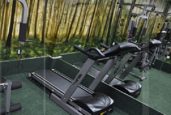 Hotel Botika Kraljevo fitness