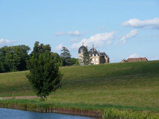 Auberge de Digoine : Château de Digoine