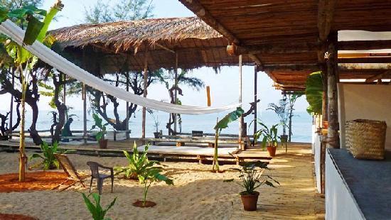 Oasis Eco Resort: Oasis Resort garden