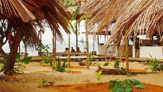 Oasis Eco Resort: Oasis Resort