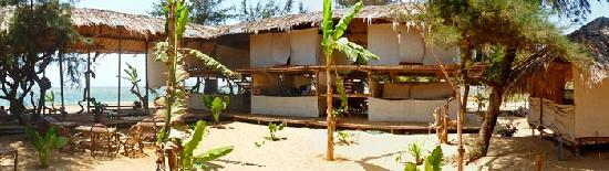 Oasis Eco Resort: views