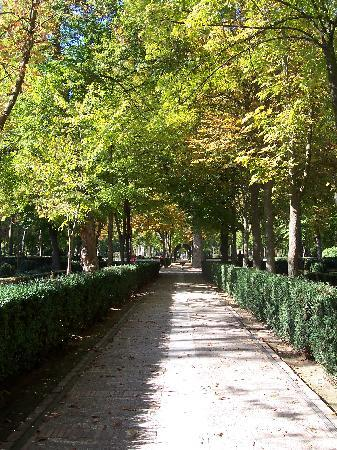 Aranjuez, España: Fountain in Jardin Parterre
