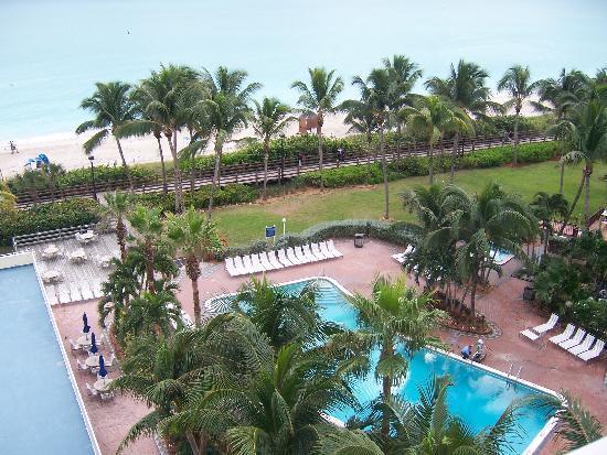 Four Points By Sheraton Miami Beach The Pool
