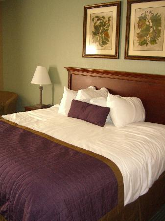 Baymont by Wyndham Cherokee Smoky Mountains: King Bed