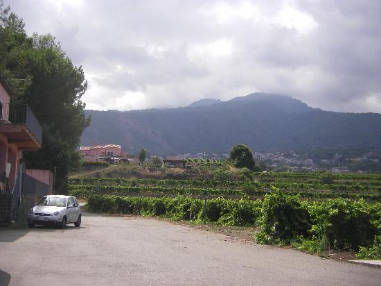 Agriturismo Tenuta San Michele: blick zur oberen Anlage