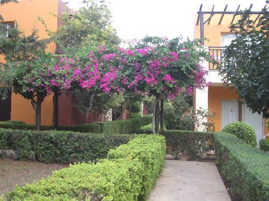 Panas Holiday Village: ein Lob an den Gärtner- die Anlage ist wunderschön