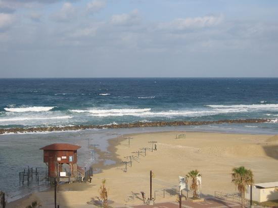 Leonardo Plaza Hotel Haifa: The view